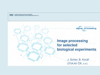 Image processing  for selected  biological experiments