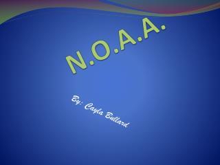 N.O.A.A.