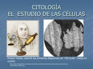 CITOLOGÍA  EL  ESTUDIO DE LAS CÉLULAS