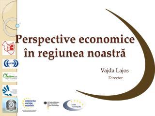 Perspective  economice în regiunea noastră