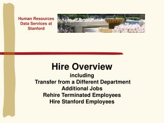 Human Resources Data Services at Stanford