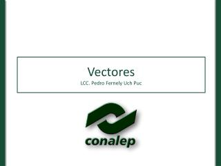 Vectores LCC. Pedro Fernely Uch Puc