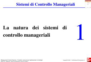 La natura dei sistemi di controllo manageriali