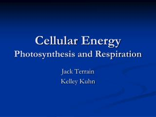 Cellular  Energy Photosynthesis and Respiration