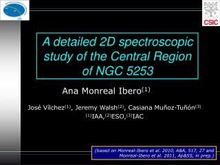 A detailed 2D spectroscopic study of the Central Region of NGC 5253