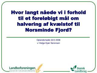 Hvor langt nåede vi i forhold til et foreløbigt mål om halvering af kvælstof til Norsminde Fjord?