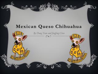 Mexican Queso Chihuahua