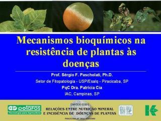 Doenças de Plantas