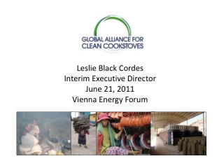 Leslie Black Cordes Interim Executive Director June 21, 2011 Vienna Energy Forum