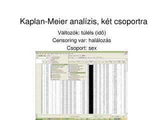 Kaplan-Meier analízis, két csoportra