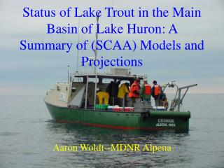 Status of Lake Trout in the Main Basin of Lake Huron: A Summary of (SCAA) Models and Projections