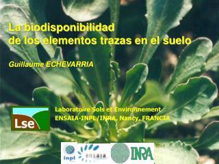 La biodisponibilidad de  los elementos trazas en el suelo Guillaume ECHEVARRIA