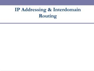 IP Addressing & Interdomain Routing