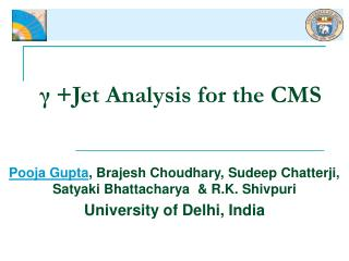 γ +Jet Analysis for the CMS