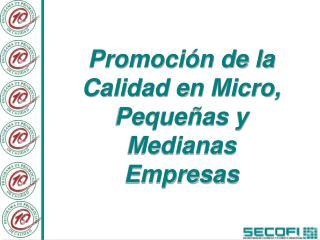 Promoción de la Calidad en Micro, Pequeñas y Medianas Empresas