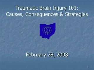 Traumatic Brain Injury 101: Causes, Consequences & Strategies