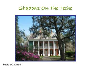 Shadows On The Teche