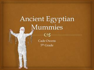 Ancient Egyptian  M ummies