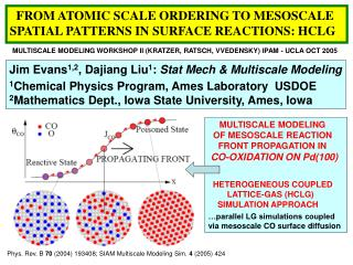 FROM ATOMIC SCALE ORDERING TO MESOSCALE SPATIAL PATTERNS IN SURFACE REACTIONS: HCLG