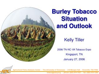 Burley Tobacco Situation and Outlook