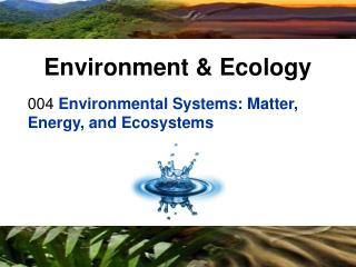004  Environmental Systems: Matter, Energy, and Ecosystems