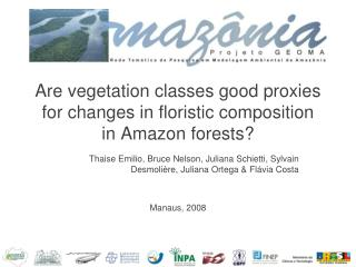 Are vegetation classes good proxies for changes in floristic composition  in Amazon forests?