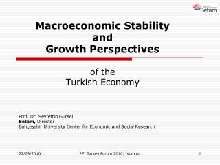 Macroeconomic Stability  and  Growth Perspectives of the  Turkish Economy