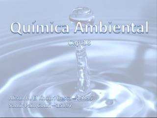 Química Ambiental Cap.18 Alison H. El Khouri Bessa – 15895 Samir Pain Couri – 15897
