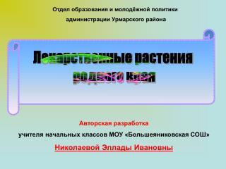 Авторская разработка  учителя начальных классов МОУ «Большеяниковская СОШ»