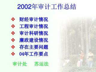 2002 年审计工作总结