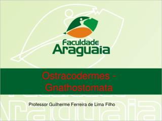 Ostracodermes - Gnathostomata