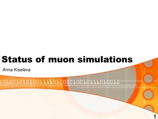 Status of muon simulations
