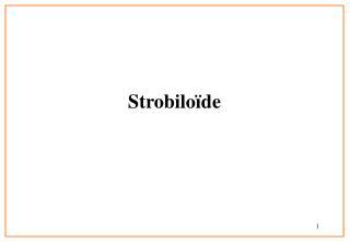 Strobilo�de