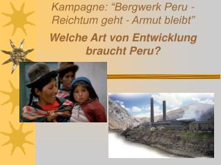 """Kampagne: """"Bergwerk Peru - Reichtum geht - Armut bleibt"""" Welche Art von Entwicklung braucht Peru?"""