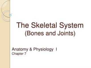 The Skeletal System  Bones and Joints