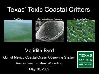 Texas' Toxic Coastal Critters