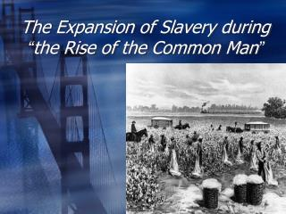 "The Expansion of Slavery during  "" the Rise of the Common Man """