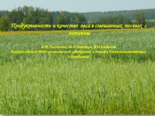 Последовательность формирования смешанных посевов