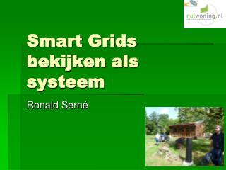 Smart  Grids  bekijken als systeem