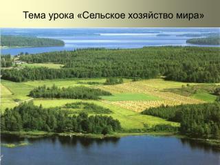 Тема урока «Сельское хозяйство мира»
