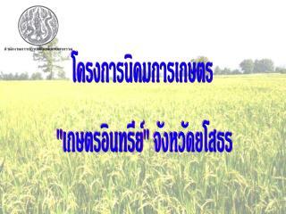 โครงการนิคมการเกษตร