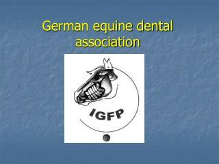 German equine dental association