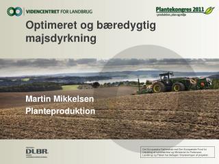 Optimeret og bæredygtig majsdyrkning