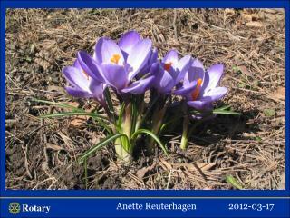 Anette  Reuterhagen 2012-03-17