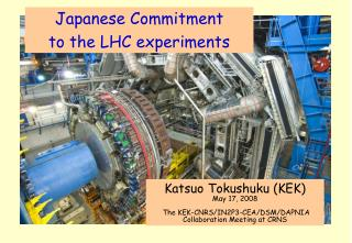 Japanese Commitment  to the LHC experiments