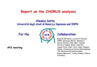 Report on the CHORUS analyses