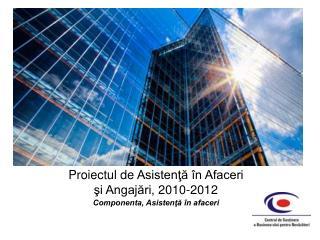 Proiectul de Asistenta  n Afaceri si Angajari, 2010-2012 Componenta, Asistenta  n afaceri