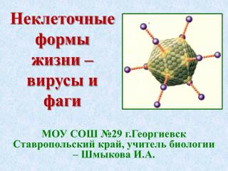 Неклеточные формы жизни – вирусы и фаги
