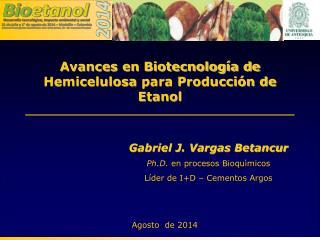 Avances en Biotecnología de  Hemicelulosa  para Producción de Etanol