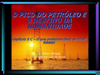 O PICO DO PETR LEO E O DESTINO DA HUMANIDADE  Cap tulo 9 C   O que podemos fazer ao n vel Estatal     Por Robert B riaul